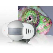 Kompakt Alarmsensor mit Gongfunktion / Bewegungsmelder und 2 Alarmeingänge