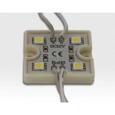 9,6W LED Kette mit 10 Modulen Tageslicht Weiss 115Grad / 5500-6500K 12VDC 64lm/Modul IP65