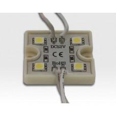 96W LED Kette mit 100 Modulen Tageslicht Weiss 115Grad / 5500-6500K 12VDC 64lm/Modul IP65