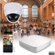 Videoset mit IP-Zoom-Dome inkl. Rekorder